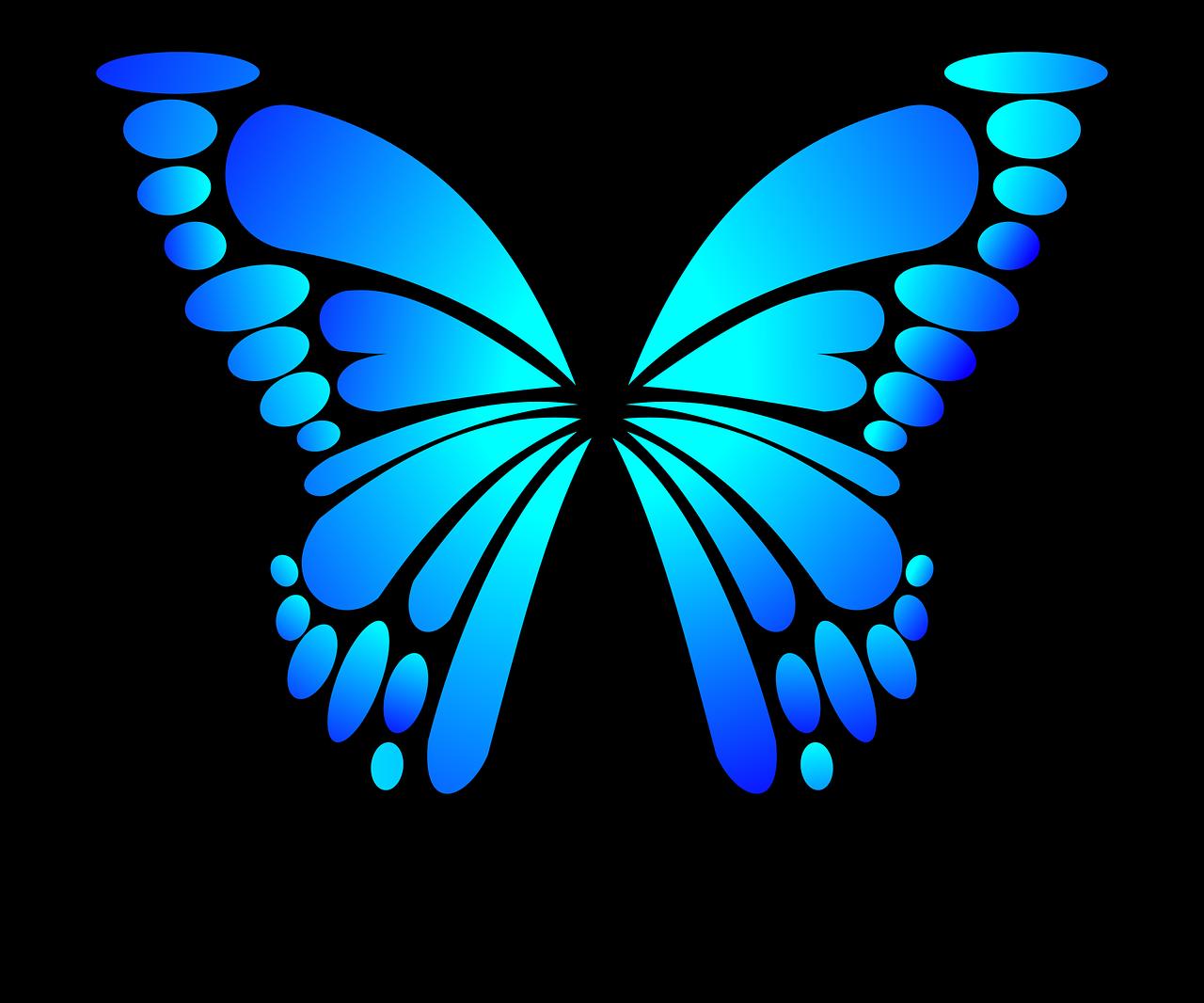 butterfly-2028591_1280